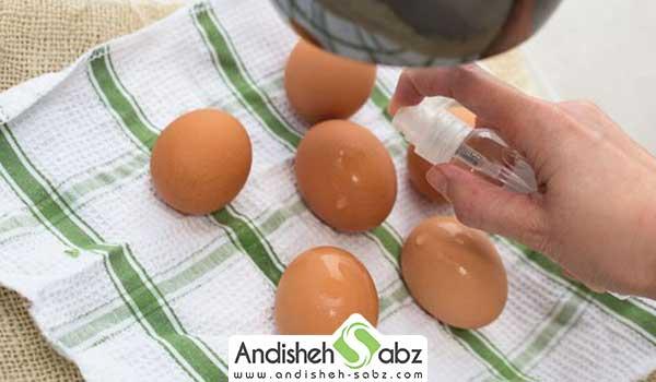 آب پاشی تخم های نطفه دار