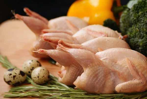 بازار عرضه و تقاضای گوشت و تخم بلدرچین - اندیشه سبز