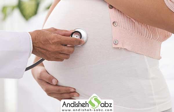 تاثیرات گوشت بلدرچین در بارداری