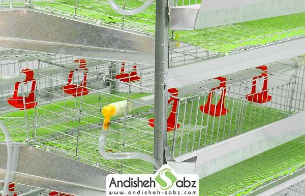 تشریح قسمت های مختلف قفس بلدرچین - اندیشه سبز