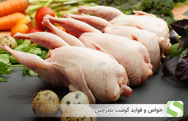 خواص و فواید گوشت بلدرچین - اندیشه سبز