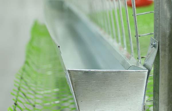 دانخوری قفس بلدرچین - اندیشه سبز