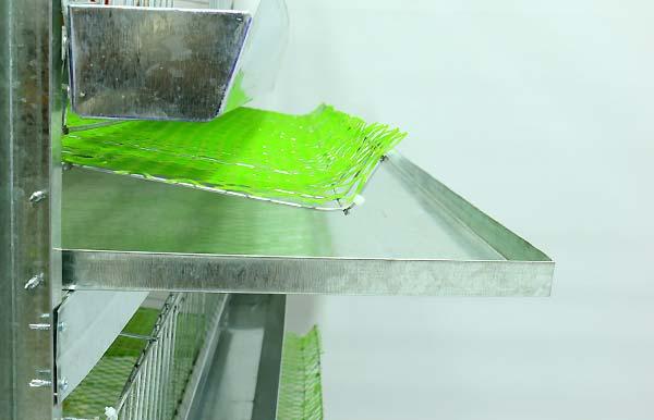 فاصله و تقسیم طبقات قفس بلدرچین - اندیشه سبز