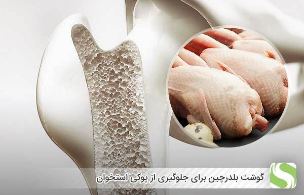 گوشت بلدرچین برای جلوگیری از پوکی استخوان - اندیشه سبز