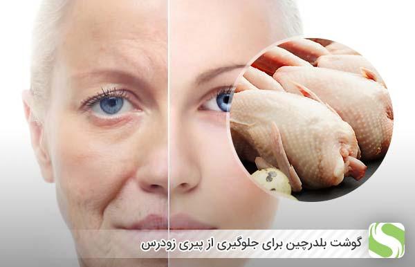 گوشت بلدرچین برای جلوگیری از پیری زودرس - اندیشه سبز