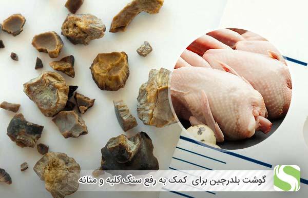 گوشت بلدرچین برای کمک به رفع سنگ کلیه و مثانه - اندیشه سبز