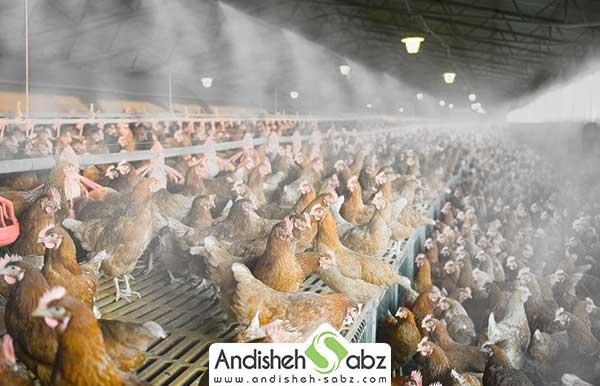 مه پاش های مناسب برای مرغداری - فروشگاه اینترنتی اندیشه سبز