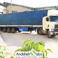 صادرات دستگاه جوجه کشی به کردستان عراق