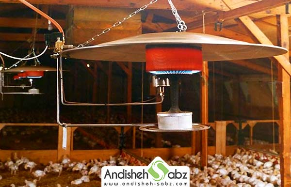 گرمایش مرغداری - اندیشه سبز