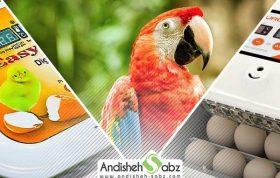 مراحل جوجه کشی از پرندگان زینتی