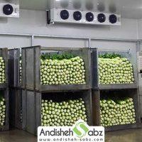 سردخانه میوه و سبزی بالای صفر - فروشگاه اینترنتی اندیشه سبز