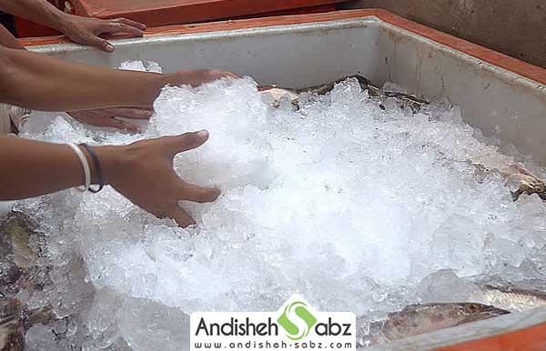 یخ پودری و برفکی و موارد استفاده از آن