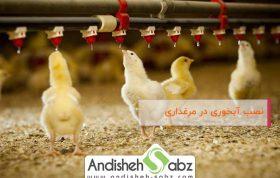 نصب آبخوری در مرغداری