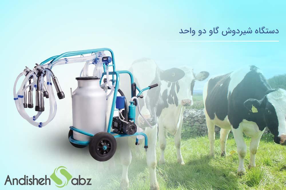 بررسی شیردوش گاو دو واحد اندیشه سبز