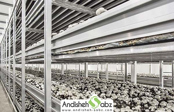 گرمایشی مناسب برای سالن پرورش قارچ - فروشگاه اینترنتی اندیشه سبز