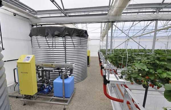 انواع تجهیزات لازم برای راه اندازی گلخانه صنعتی