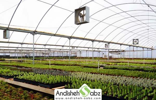 تجهیزات مورد نیاز برای احداث گلخانه صنعتی