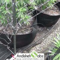 مزایا و معایب گرمایش از کف گلخانه