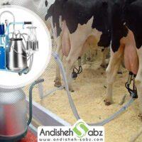 راهنمای خرید شیردوش برقی گاو و گوسفند