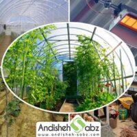 چگونه با هزینه کم گرمایش گلخانه را تامین کنیم