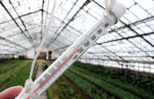 بررسی دمای گلخانه - اندیشه سبز