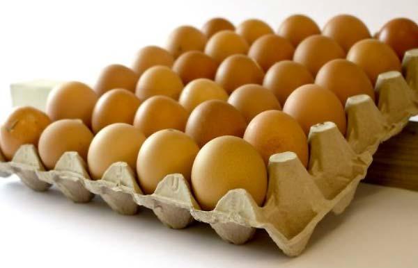 حداقل و حداکثر مدت زمان نگهداری از تخم نطفه دار - اندیشه سبز