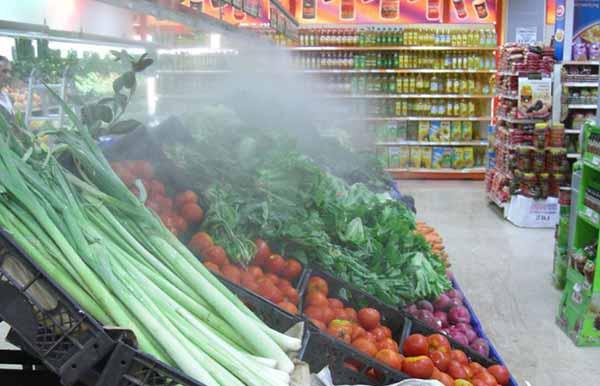 رطوبت ساز مناسب برای سالن میوه و سبزی - اندیشه سبز
