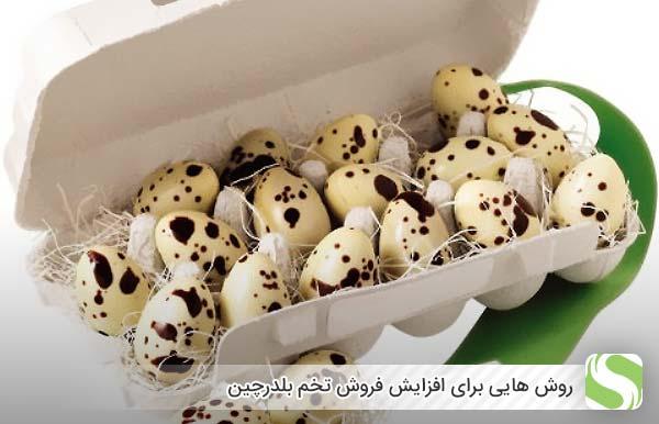 روش هایی برای افزایش فروش تخم بلدرچین - اندیشه سبز
