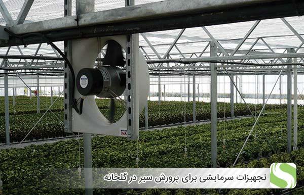 تجهیزات سرمایشی برای پرورش سیر در گلخانه - اندیشه سبز
