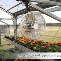 چطور در تابستان هوای گلخانه را تهویه کنیم؟ - اندیشه سبز