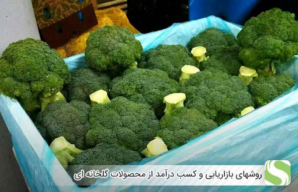 روشهای بازاریابی و کسب درآمد از محصولات گلخانه ای - اندیشه سبز