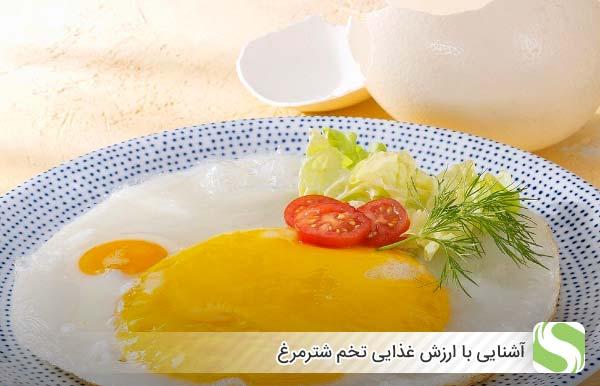 آشنایی با ارزش غذایی تخم شترمرغ - اندیشه سبز